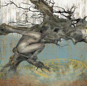 Yo soy el árbol